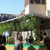Fête du Sel à Salies de Béarn 08.09.2012